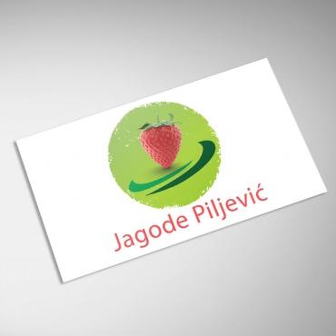 special4code_portfolio_logo_design_jagode_piljevic